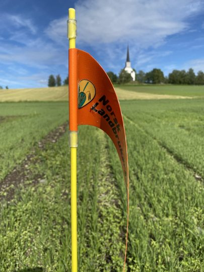 Hjørneflagg Einar Strand
